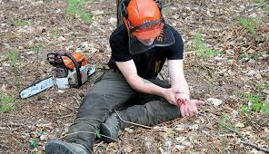 Forestry First Aid - Fife first aid training scotland uk local friendly training courses programmes corporate