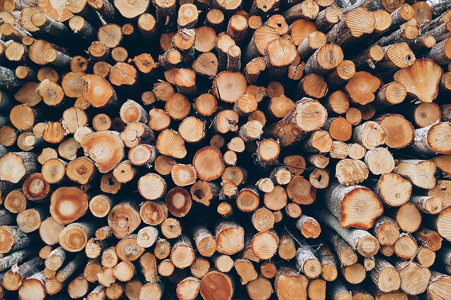 Wood Log Pile - Forestry First Aid Fife